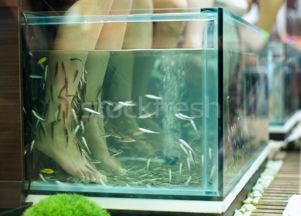 エキゾチック 足 マッサージ 水族館 ストックフォト © pekour