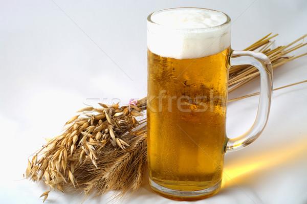Arpa bira buğday yulaf cam arka plan Stok fotoğraf © pekour