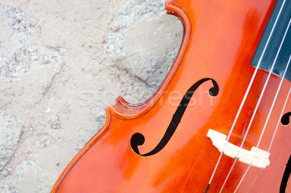 Cello closeup on paving stone Stock photo © pekour