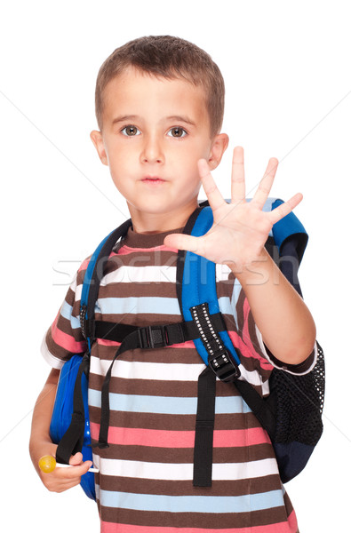 Little boy elementary student with backpack and sandwich box sho Stock photo © pekour