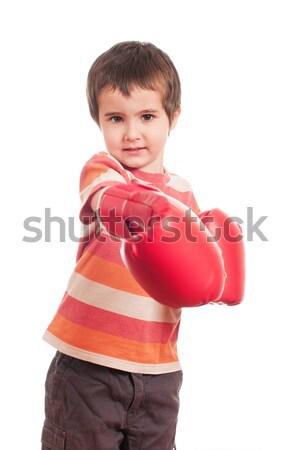 Pequeno boxeador atacar zangado menino isolado Foto stock © pekour
