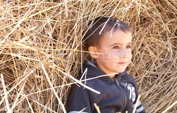 Peu garçon meule de foin portrait été ferme Photo stock © pekour
