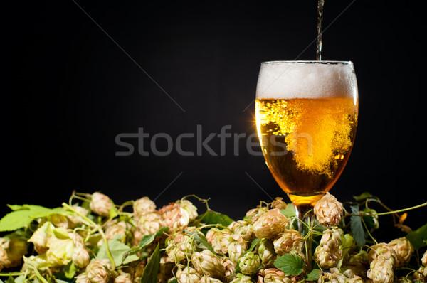 Bier glas hop druiven zwarte Stockfoto © pekour