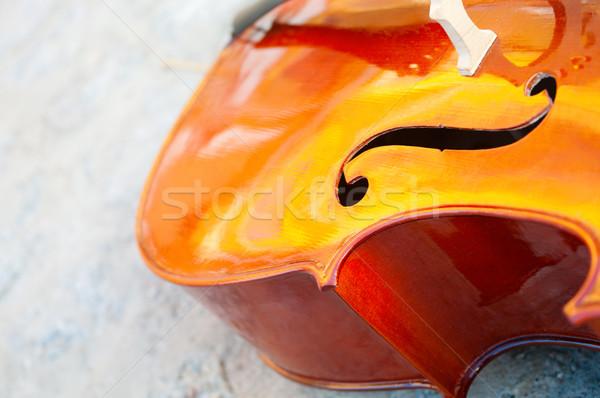 Viyolonsel taş arka plan keman enstrüman Stok fotoğraf © pekour