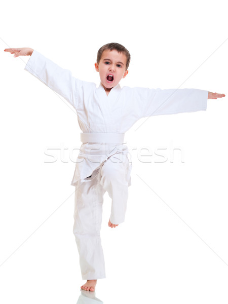 Kung fu boy fighting position of crane in white kimono Stock photo © pekour