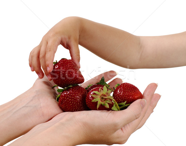 Mother gives handful strawberries to her son Stock photo © pekour