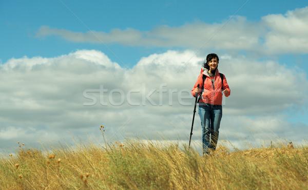 Turist kadın dağlar bulutlu gökyüzü seyahat Stok fotoğraf © pekour