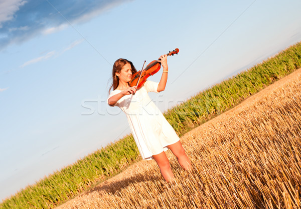 Young woman playing violin outdoors on the field Stock photo © pekour