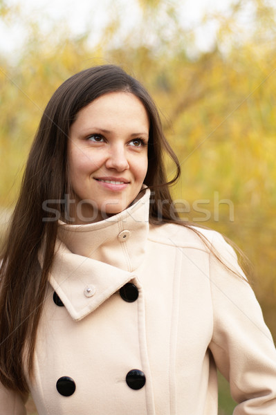 желтый листьев Постоянный лес осень Сток-фото © pekour