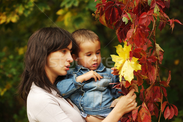 Woman and boy pick up leaves Stock photo © pekour