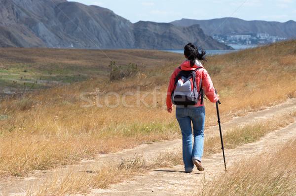 Turist kadın dağlar dağ seyahat geri Stok fotoğraf © pekour