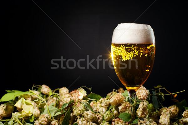 Vetro birra hop nero bere alcol Foto d'archivio © pekour