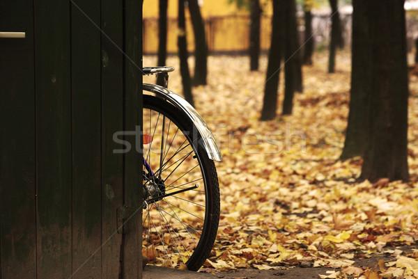 велосипед колесо желтый листьев дороги велосипедов Сток-фото © pekour