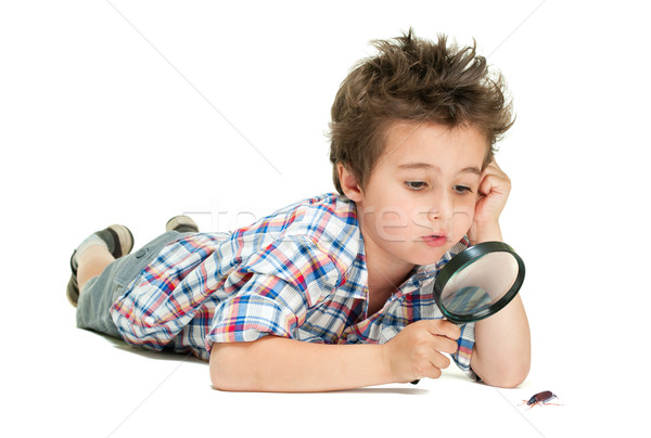 Attentive little boy with weird hair researching the bug using m Stock photo © pekour