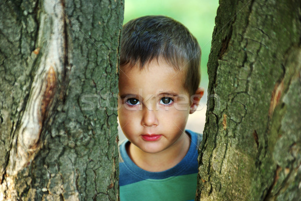 Nice boy hiding Stock photo © pekour