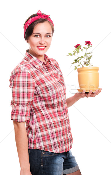 Happy housewife in kerchief with flower pot Stock photo © pekour
