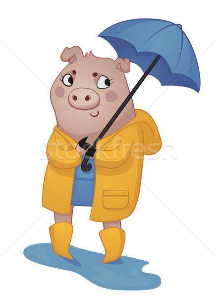 Cartoon Pig in Rain Gear. Stock photo © penguinline