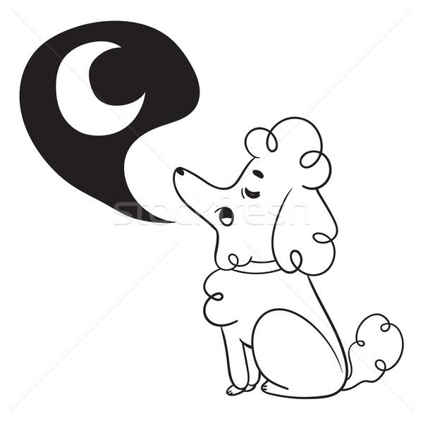 商业照片: 可爱 ·狗· 月亮 · 漫画 · 狮子狗 · 坐在