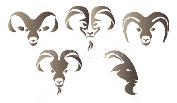 Geit logo ingesteld illustratie bruin hoofd Stockfoto © penivajz