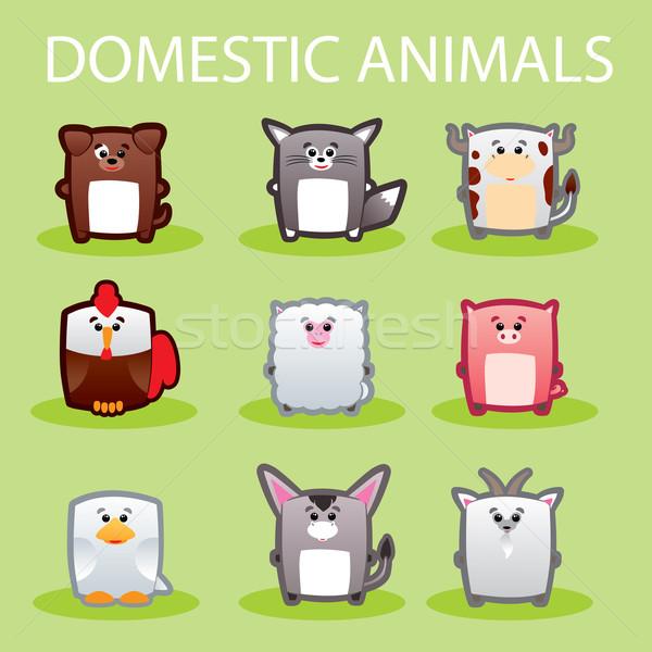 Domestic animals Stock photo © penivajz