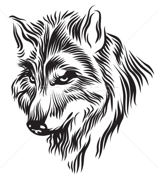 黒白 オオカミ 頭 実例 ストックフォト © penivajz