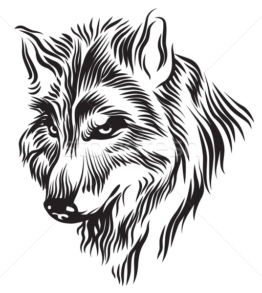 Zwart wit wolf hoofd illustratie Stockfoto © penivajz
