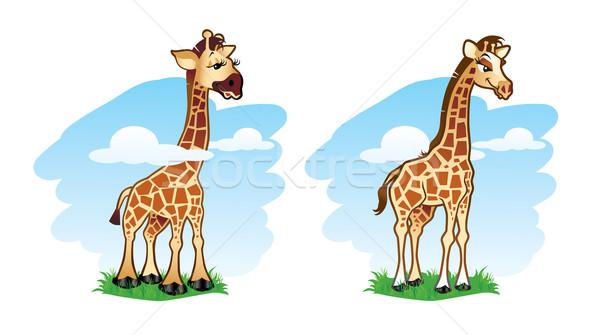 Giraffe illustratie twee cute giraffen groen gras Stockfoto © penivajz
