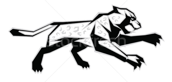 Black, white, grey jaguar  Stock photo © penivajz
