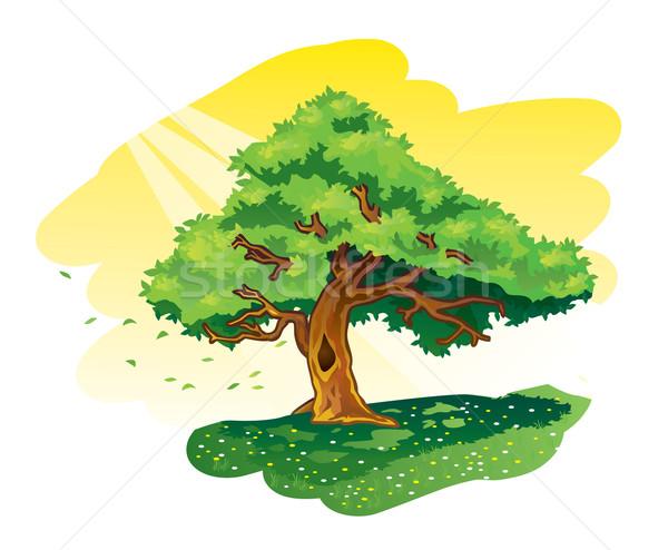 Groot boom illustratie groene boom bloem weide Stockfoto © penivajz