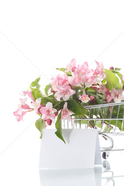 Stock photo: beautiful pink flowers in the truck