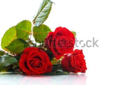bouquet of beautiful red roses  Stock photo © Peredniankina