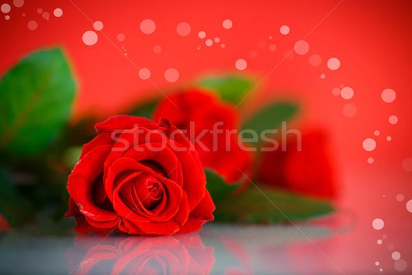 Rood mooie steeg zon hart tuin Stockfoto © Peredniankina