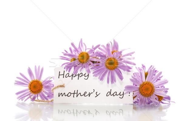 congratulation happy mother  Stock photo © Peredniankina
