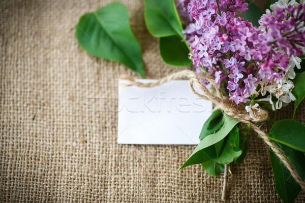 Virágzó orgona gyönyörű asztal zsákvászon természet Stock fotó © Peredniankina