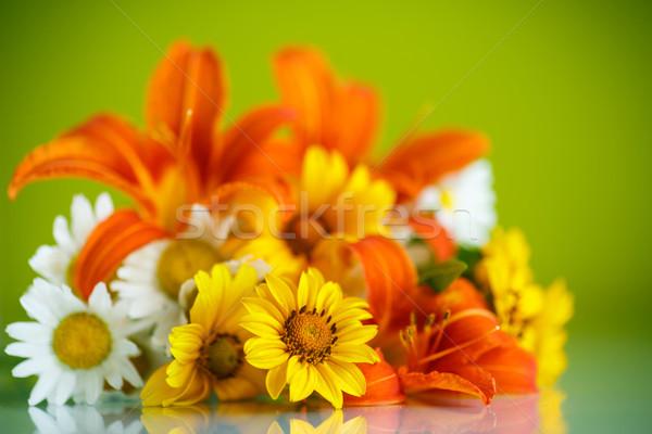 Boeket Geel witte madeliefjes groene bloem Stockfoto © Peredniankina