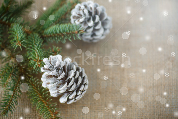 クリスマスツリー 木材 幸せ 抽象的な デザイン 雪 ストックフォト © Peredniankina