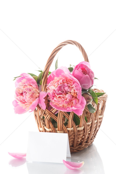 beautiful bouquet of peonies in a basket  Stock photo © Peredniankina