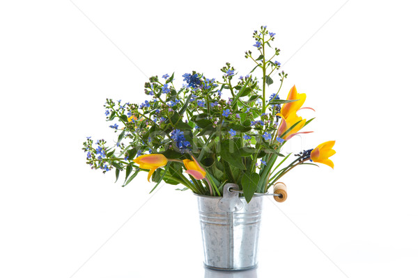 Stock photo: bouquet of early spring flowers