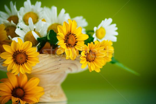 Ramo amarillo blanco margaritas verde flor Foto stock © Peredniankina