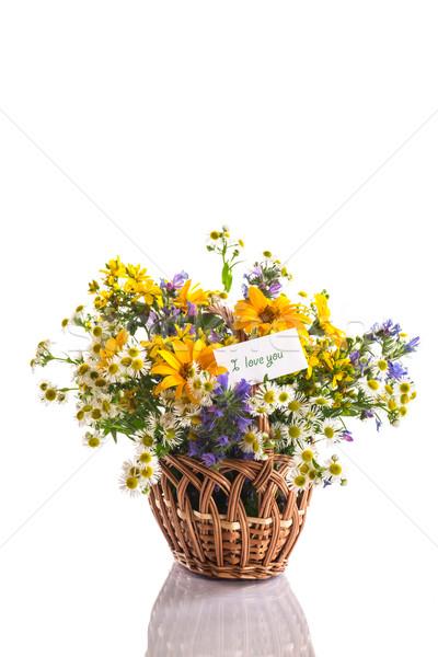 Ramo flores de verano hermosa blanco flor amor Foto stock © Peredniankina