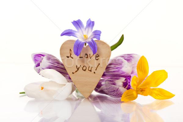 Nyilatkozat szeretet húsvét virágok fa természet Stock fotó © Peredniankina