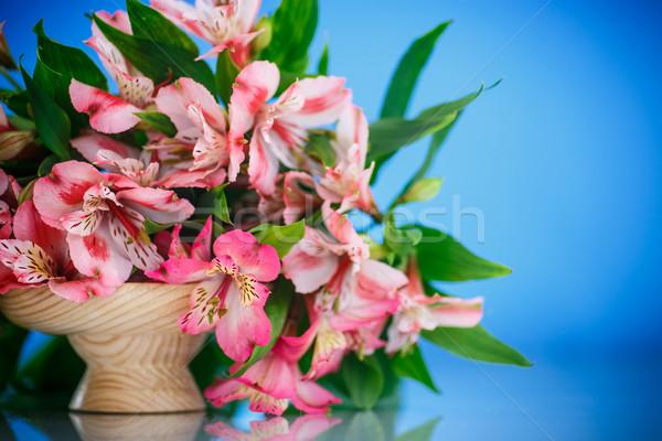 Gyönyörű virágcsokor virágok virág kert háttér Stock fotó © Peredniankina