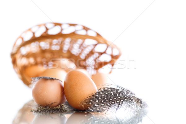 Eieren Guinea gevogelte veren witte Pasen Stockfoto © Peredniankina