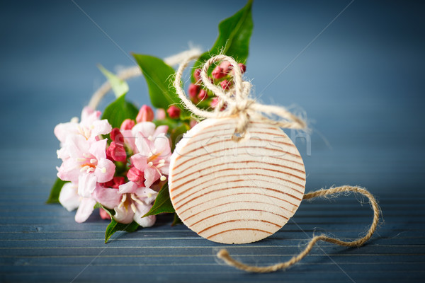 Stock photo: Weigela
