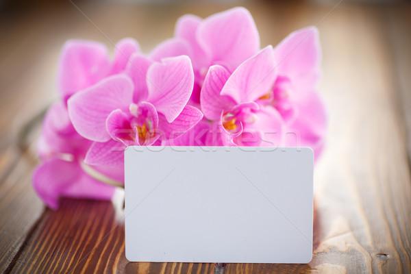 Güzel mor çiçekler ahşap masa bahar güzellik Stok fotoğraf © Peredniankina