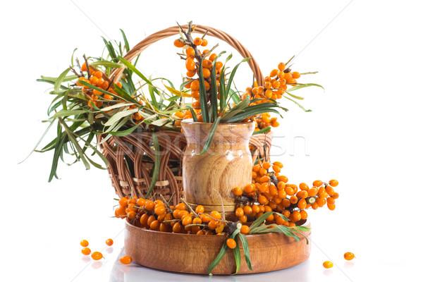 Rama maduro bayas blanco naturaleza frutas Foto stock © Peredniankina