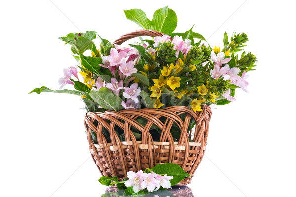 Stock photo: beautiful summer bouquet in a wicker basket
