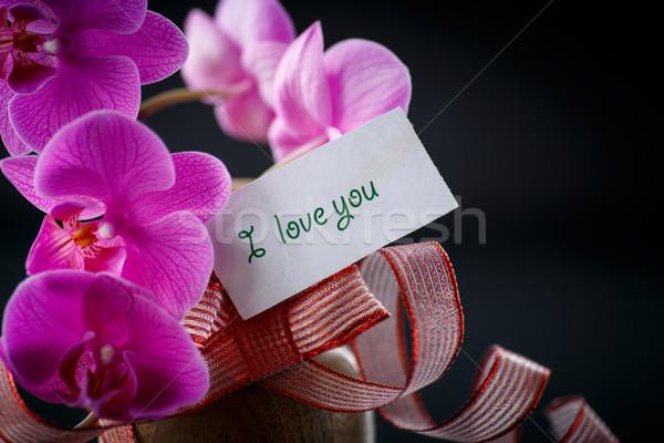 Vonal nyilatkozat szeretet fekete virág virágok Stock fotó © Peredniankina