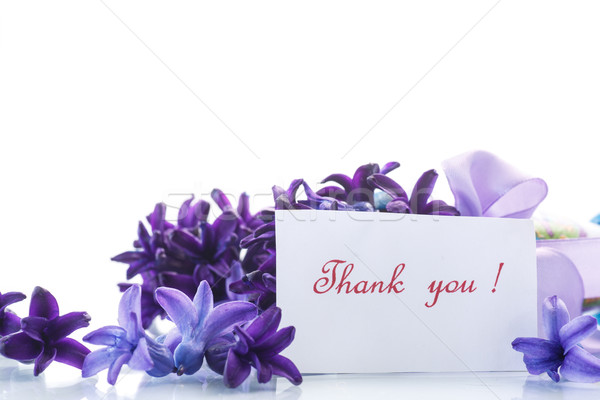 Spring blooming hyacinth with gratitude card  Stock photo © Peredniankina