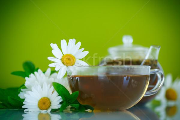 Kamilla tea üveg teáskanna zöld nyár Stock fotó © Peredniankina